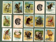 Tobacco cigarette cards set Birds, Beasts & Fishes 1937, by B.A.T